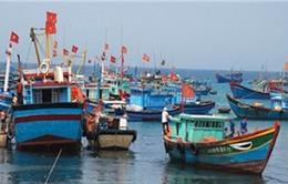 Phú Yên: Tăng cường quản lý tàu cá ngừ đánh bắt xa bờ