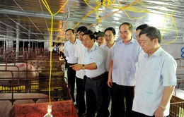 Ưu tiên vốn cho 500 Hợp tác xã nông nghiệp kiểu mới