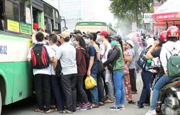 Người dân TP.HCM ngày càng 'nản' với xe bus