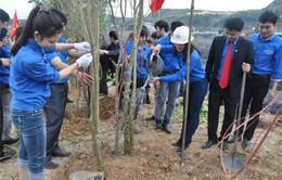 Nhiều địa phương phát động Tết trồng cây Xuân Ất Mùi 2015
