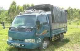 Quảng Ngãi: Tuyên án nhóm sử dụng ô tô gây loạt vụ trộm bò