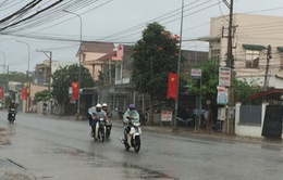 """Những cơn """"mưa vàng"""" tại Ninh Thuận"""