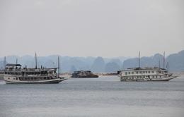 Cắt giảm số tàu du lịch tại vịnh Hạ Long do quá tải