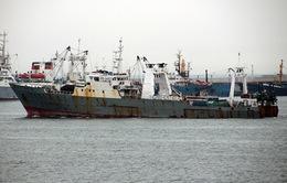 Tàu cá Hàn Quốc chìm ngoài khơi bờ biển Nga, 52 người mất tích