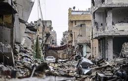 Syria: Thị trấn Kobani thành đống đổ nát vì chiến tranh dữ dội