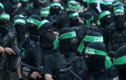 Tổ chức Ân xá Quốc tế: Hamas phạm tội ác chiến tranh ở Dải Gaza