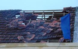 Lốc xoáy, mưa đá khiến hơn 300 ngôi nhà tốc mái, 1 người bị cây đè chết
