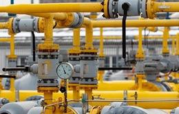 Nga và Hy Lạp thảo luận xây dựng đường ống dẫn khí đốt