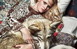 Chụp ảnh với... động vật - trào lưu mới trong giới thời trang