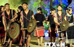 """Đa dạng các hoạt động văn hóa tại tuần lễ """"Đại đoàn kết ASEAN"""""""
