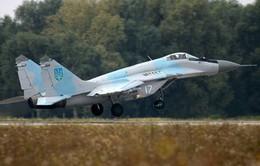 Ukraine: Lực lượng ly khai bắn hạ một máy bay chiến đấu Mig-29