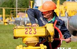 Belarus sẵn sàng cung cấp các sản phẩm dầu mỏ cho Ukraine