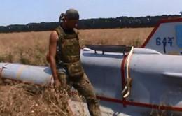 Lực lượng ly khai bắn hạ một UAV Tu-143 của quân đội Ukraine