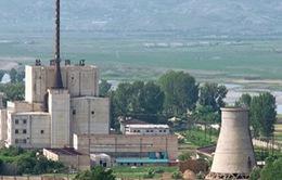 Triều Tiên tái khởi động các nhà máy sản xuất nguyên liệu hạt nhân