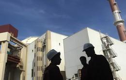 Tổng Giám đốc IAEA thăm cơ sở quân sự nhạy cảm của Iran