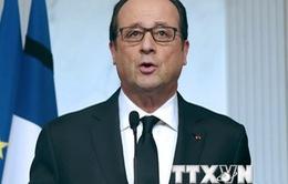 Pháp cân nhắc tham gia liên minh quốc tế không kích IS ở Syria