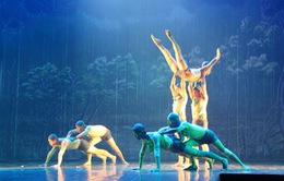 Hơn 200 nghệ sĩ múa tụ hội ở Hoa muôn sắc