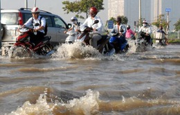 Thành phố Hồ Chí Minh tính cách ứng phó triều cường có thể đạt mức 1,6m