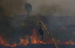 Indonesia gia hạn tình trạng khẩn cấp do khói bụi