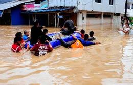 Indonesia: Hàng nghìn người sơ tán do lũ lụt
