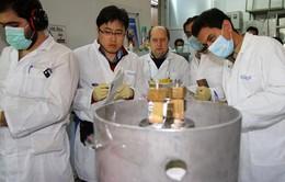 Mỹ ủng hộ thỏa thuận thanh sát cơ sở hạt nhân giữa IAEA và Iran
