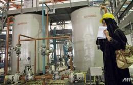 EU thông qua khuôn khổ pháp lý cho việc dỡ bỏ trừng phạt Iran