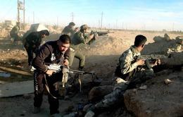 Iraq đẩy mạnh các chiến dịch tấn công giành lại Ramadi