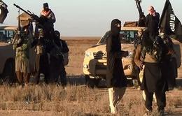 LHQ lên án mạnh mẽ hành động của IS tại Syria