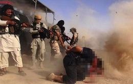 IS hành quyết thêm nhiều công dân người Iraq