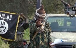 IS tuyên bố chấp nhận liên minh với Boko Haram