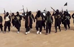 Tổng thống Putin xác nhận nhiều công dân Nga tham gia IS
