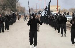 IS hành quyết thêm ba nhân viên an ninh Iraq