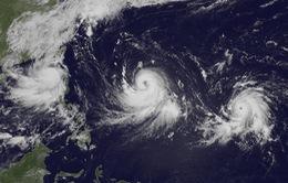 Trung Quốc ban hành cảnh báo bão cấp 2