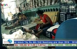 Thâm nhập cơ sở sản xuất khăn giấy ướt giá rẻ (21h50, VTV1)