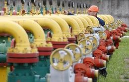 Nga ngừng cung cấp khí đốt cho Ukraine