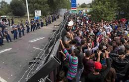 Khủng hoảng di cư tại châu Âu tiếp tục diễn biến phức tạp