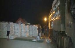 Phát hiện gần 100 xe quá tải trên cao tốc Hà Nội - Lào Cai
