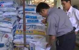 TT - Huế: Kiểm tra sử dụng chất cấm trong chăn nuôi