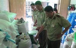 Kiểm tra, làm rõ nghi vấn gạo nhựa tại TP.HCM