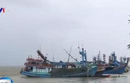 Vụ tàu ngư dân Kiên Giang bị bắn: Bác bỏ khả năng tàu lạ là cướp biển