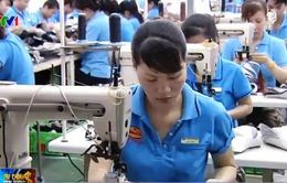 Moody's: Kinh tế Việt Nam tăng tốc trong khi các nền kinh tế châu Á chậm lại