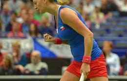 Loại Pháp, CH Czech vào chung kết Fed Cup 2015