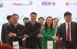 4 ngân hàng lớn tham gia xây dựng cảng biển Trung tâm điện lực Duyên hải