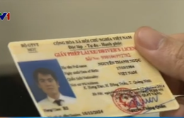 Nhân rộng mô hình đổi giấy phép lái xe qua mạng từ quý II/2015