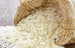 Khó xây dựng thương hiệu quốc gia cho gạo Việt Nam