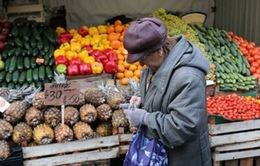 Tỷ lệ lạm phát của Ukraine tăng chóng mặt sau 1 năm xung đột
