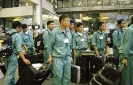 Hàn Quốc tiếp nhận trở lại lao động Việt Nam