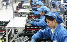 Hỗ trợ học nghề, tạo việc làm cho hơn 100 nghìn lao động nữ