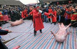 """Nghi thức chém lợn, đập trâu làm """"nóng"""" hội nghị về lễ hội"""