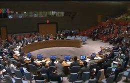 Hội đồng bảo an LHQ họp về tình hình Ukraine